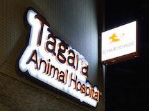 田柄動物病院 様 LEDバックライト文字 施工実績