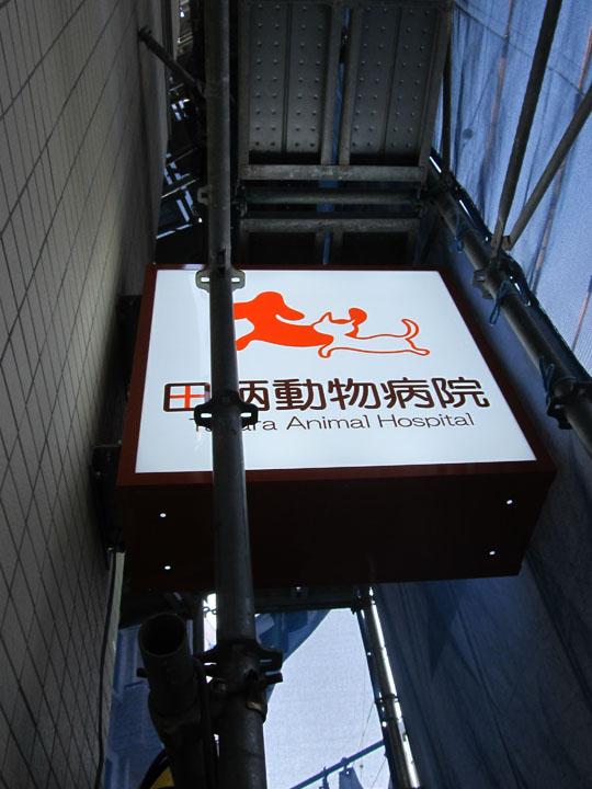 田柄動物病院 様 LEDバックライト文字 施工実績6